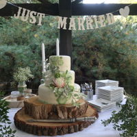Greenery Cake A cake in beautiful green colors, succulents en leaves. Partially been made of edible wafer paper.The cake had to be delivered in a...