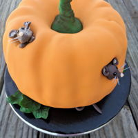 Pumpkin Mouse Home Inspired by Cake Centre user @LolaT. This is two Bundt cakes sandwiced together with a little bit of carving to fit the mice. Cakes are...
