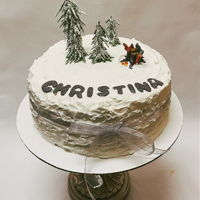 White Christmas Cake Buttercream
