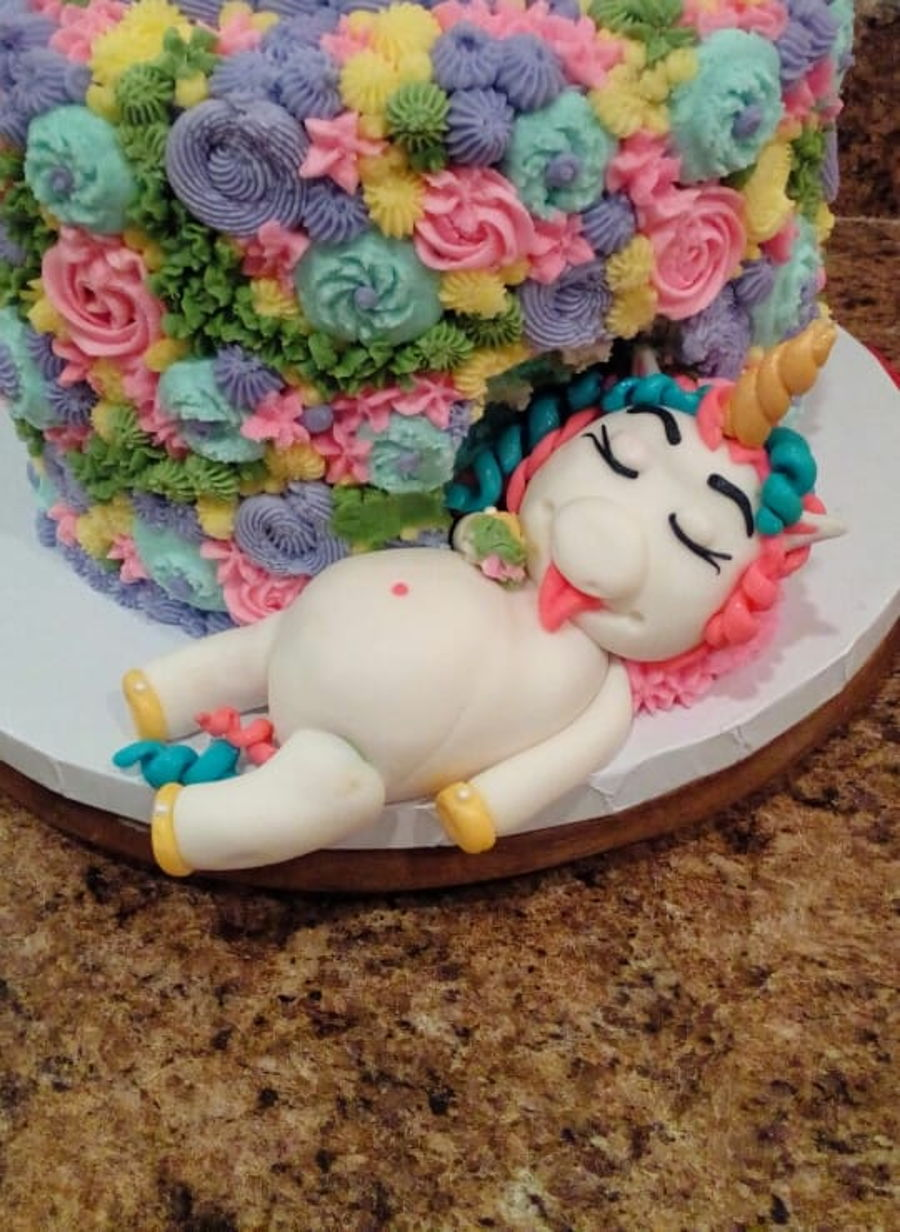 Chubby Unicorn Cake on Cake Central