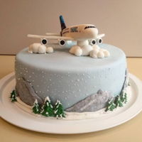 Airbus A380 Cake for a fan of airplanes, big airplanes :) Plane made from fondant with some cmc powder added.
