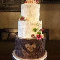Rustic Wedding Cake fondant and buttercream wedding cake