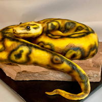 Snake Cake Airbrushed fondant covered carrot cake.