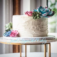 "Succulent Single Tier Wedding Cake Various Succulents adorn this single tier wedding cake. American Buttercream used to create a ""stucco"" look. Triple Chocolate..."