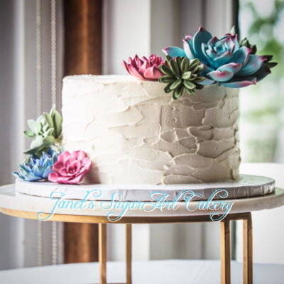 Succulent Single Tier Wedding Cake