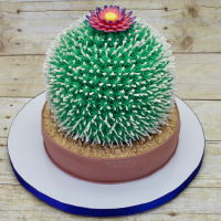 Cactus Cake Eight inch round and six inch sphere vanilla cake with vanilla buttercream filling. Flowerpot is decorated with fondant, and crunched...