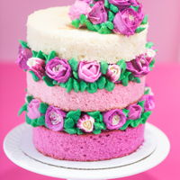 Shades Of Love A sweet little valentine cake with ombre naked tiers and buttercream roses