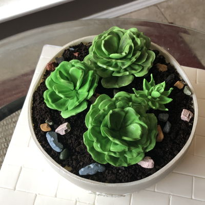 Succulents Flower Pot Cake on Cake Central