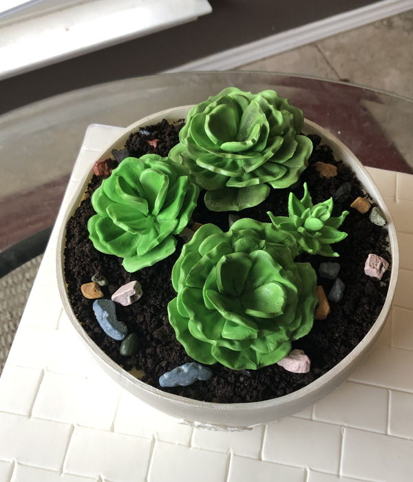 Succulents Flower Pot Cake