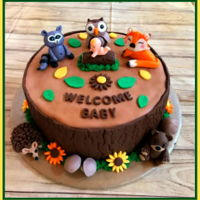 Boy Baby Shower Woodland animals