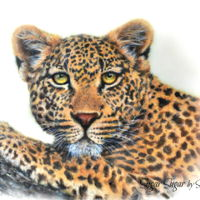 "Leopard The Leopard is my contribution to the Spectacular Pakistan Collaboration. It is painted on an 8"" x 11"" fondant panel with petal..."
