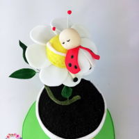 Little Baby Ladybird Cake I'm so proud of this cake. My own design. Please follow me on Instagram Http://www.instagram.com/sweetstudio.ie