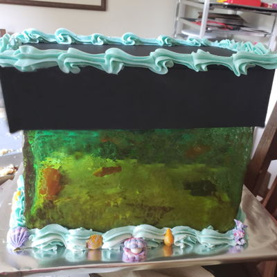 Fish Tank Cake With Sugar Glass