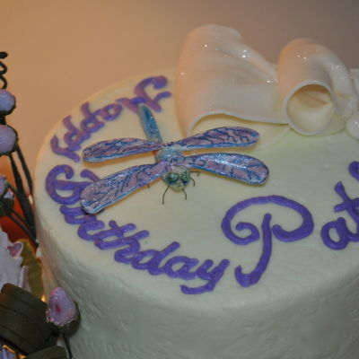 Pat's Dragon Fly Cake