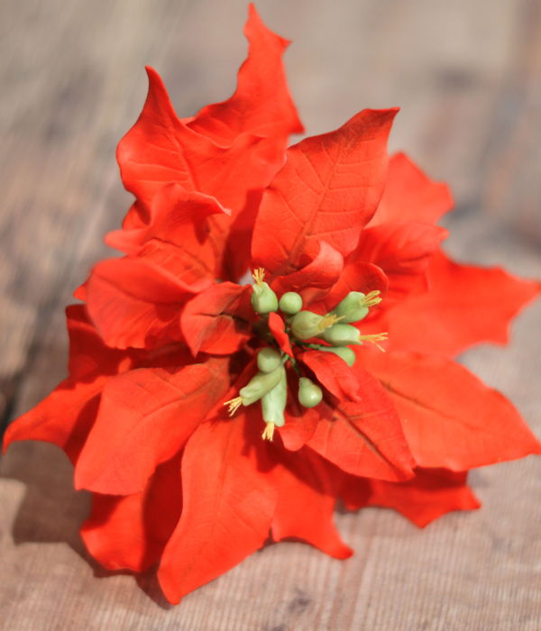Poinsettia Sugar Flower In Gum Paste