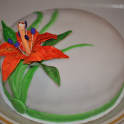 Tiger Lily - First Decorated Cake
