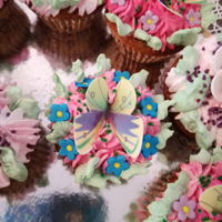 Cupcakes Cupcakes with dry fruits